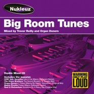 Big Room Tunes – Mixed by Trevor Reilly & Organ Donors [2003]