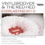 Vinylgroover & the Red Hed - Everlasting 2010